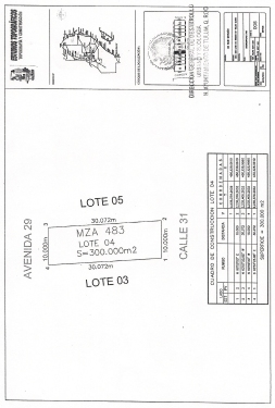 Mz-483-Lots-04